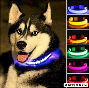Nylon LED Pet Dog Collar Night Safety Flashing Glow Collar Light In The Dark Dog Leash Dogs Fluorescent Luminous Collars Pet Supplies