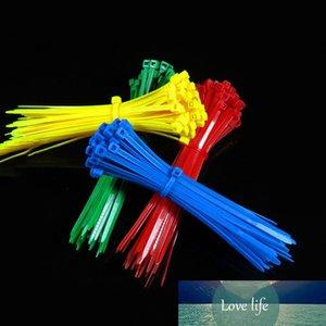 100 قطع 3 * 100 ملليمتر البلاستيك نايلون كابل العلاقات سلك البريدي التعادل reusable ملون قياسي قفل الذاتي