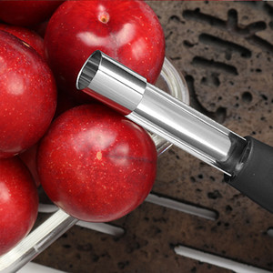 Apple corer Stainless Steel Denucleator fruit seed Remover kitchen accessory Stainless Steel Apple Pear Corer Kitchen Tool DHL Free