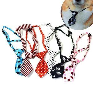 Cachorrinho gravata do cão gravata novas crianças ajustáveis Bowtie Multicolor Conveniente Gravata Pet Cravat Cravat Dot Strip10pcs / lote