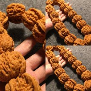 6kxh Машина кисти покрытый белый лев большие бусины браслет браслет браслет браслет удерживаемый ореховый орех розарий Будда ch_dhgate buds браслет маленький