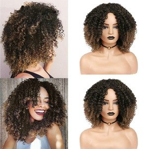 Afro Kinky Curly Short Synthetic Wig Mixed Dark Light Brown 14inch For America Africa Women Hair Cosplay Heat Resistant