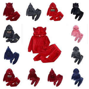 80-140cm Children Pleuche Tracksuit Two Piece Velvety Outfits Boys Girls Pullover Hoodie Hooded Tops and Legging Pants Kids Clothing G10509