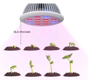 Par38 12W Led grow light for Indoor Garden and Plants Hydroponics Greenhouse Organic