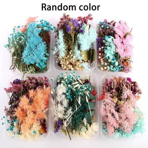 Jewelry Making Craft Pendant Supplies DIY Accessories Ornament Random Color Party Decorate 1Box Dried Flower Plant