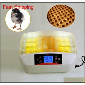 32 Yumurta Pratik Matic Poultry Kuluçka ile Yumurta Qylebk New_Dhbest
