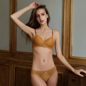 High Quality Sexy Charming Bra Set Traditional Undergarment Women Without Underwire Brassiere Underwear Lingerie