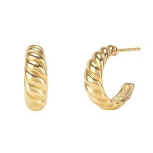 2021 Nuevo Llegado de alta calidad Color de oro Geométrico Moda Simple Mujeres Joyería Minimato Delicado Twinst Hoop Pendiente