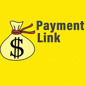 Payment Link for Other Bags ,Shoes, Apparel or Accessories and Custom items Fashion products or Shipping Fees