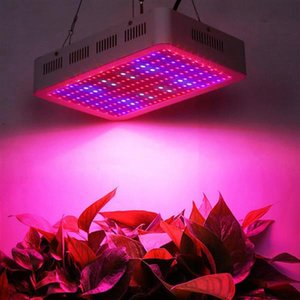 Newest Design 2000W Dual Chips 380-730nm Full Light Spectrum LED Plant Growth Lamp White Grow Lights wholesale