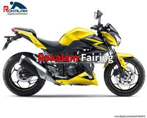 Z250 2015 para KAWASAKI 2016 Z 250 Z300 Failings Kit 15 16 Z 300 Carnacio de motocicletas (moldeo por inyección)