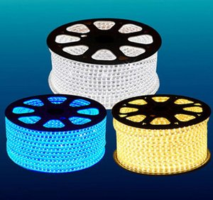 Fanlive 30 Meter / Los) Wasserdichte 220V-240V 5050 flexible LED-Streifen-Licht-Band-60leds / M Rot Grün Blau Gelb Weiß