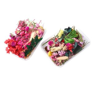 2 Boxes DIY Mixed Dried Flowers Real Dried Flowers Materials for Art Craft Candle Scrapbooking (Random Color)