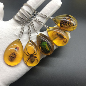 Creative Car ambra portachiavi portachiavi insetto scorpione ambra portachiavi Portafoglio Borsa regalo Ciondolo ambra Ciondolo di Natale