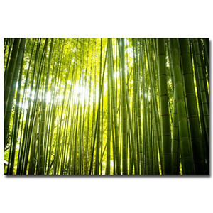 NICOLESHENTING Forest Path Bamboo Sunbeam Art Silk Fabric Poster Print 12x18 24x36inch Wall Pictures Living Room Decor 004