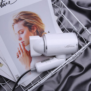Anion Hair Dryer Negative Ion hair care Professinal Quick Dry Home 1200W Foldable handle