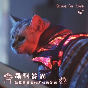 LED fashionable glowing cat and dog vests and waistcoat to prevent loss of warm and cold resistant glowing pet supplies during night travel