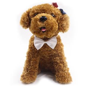 قابل للتعديل كلب القوس التعادل الرقبة التبعي قلادة قلادة جرو مشرق اللون الحيوانات الأليفة القوس مزيج اللون HWB2766