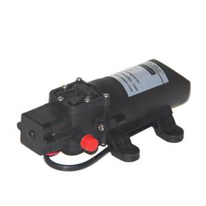 Whaleflo FLO-2202A 12v 24V 4L min 80psi agricultural self-priming power mini electric sprayer pressure diaphragm pump