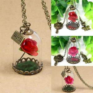Wish Dried Flower Mini Rose In Terrarium and Mirror Charm Glass Bottle Necklace Chain Pendant Necklaces1