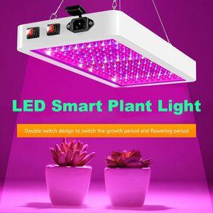 LED Cultive Light Phytolamp 2000W 3000W para lámpara de planta Lámpara de crecimiento de chip de LED impermeable Lámpara de crecimiento de espectro completo Iluminación interior