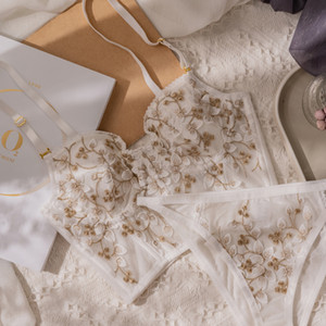 Biiggxx cordón del bordado de acero de goma hueso fuera de la ropa interior francesa Set de Sujetador Pantalones poco atractivo de las señoras Europa y América lindo c1114