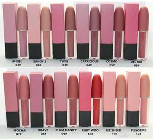 Nova maquiagem Lips 4,5g Luster Lip Gloss 12 cores diferentes Cosmetic LipGloss frete grátis