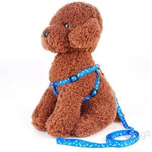 البوليستر المطبوعة تسخير الكلب المقاود قابل للتعديل طوق كلب قلادة الحيوانات الأليفة حبل الحيوانات الأليفة حبل التعادل طوق اكسسوارات الصغيرة الكلب BH4287 WXM