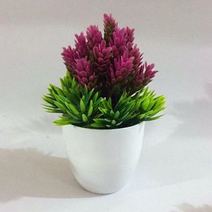 Bonsai Seed Tree Plant Potted Flower Decoration Purifier Home Decoration