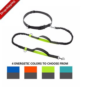 Dog Leash Dual Handle Hands Free Running Leash Shock Absorbing, Extendible Bungee Reflective Stitching Adjustable Waist Belt 1020