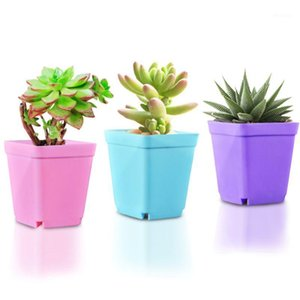 Planta de escritorio creativa Potted Flower Bandeja Mini plástico Jardín personalizado suministros transpirable Buena flexibilidad1