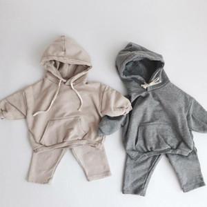 Newborn Baby Clothing Sets Autumn Boys Hooded Sweatshirt Long Sleeve Tops Kids Girls Harem Pants Suit Children Clothes Set