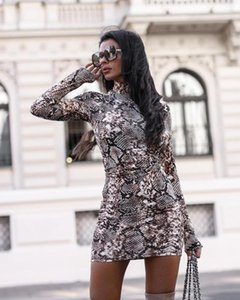 Women Long Sleeve Leopard Print Dress 2021 Snake Skin Sexy Evening Party Clubwear Turtleneck Dress Bodycon Fashion Women