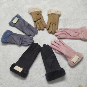 Европейские и американские перчатки дамы осень зимний сенсорный экран с плюшевыми и утолщенными теплыми перчатками