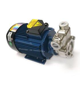 YS Gas Liquid Mixing Pump, High Efficiency Liquid Gas Ozone, Air Nano Micro Bubble Aerator Pump
