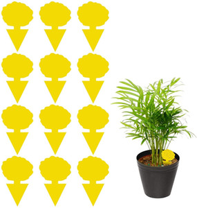 US STOCK 12 Pack Sticky Trap, Fruit Fly and Fungus Gnat Trap Killer Indoor and Outdoor, Protect The Plant, Non-Toxic and Odorles
