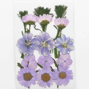 1bag Flores secas UV resina decorativa floral floral floral adesivos 3d beleza Nail Art decalques epoxy molde diy enchimento de jóias h quyljdi