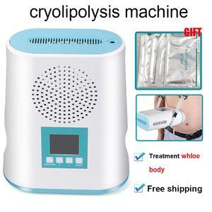 휴대용 미니 Cryolipolysis 지방 냉동 슬리밍 기계 진공 뚱뚱한 감소 Cryotherapy Cryo Fat Freeze Machine 홈 사용
