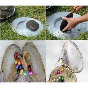 Oval Oyster İnci 6-7mm Mix 15 Renk Taze Su Doğal Inci Hediye DIY Gevşek Süslemeleri Vakum Ambalaj W WMTNSD DH_SELLER2010