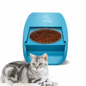 Private mode Smart pet feeder factory directly
