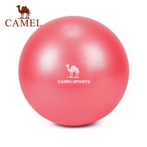 Camel Йога Пилатес оборудование 22см 30см фитнес баланс крытый арахисовое физической силы Pu