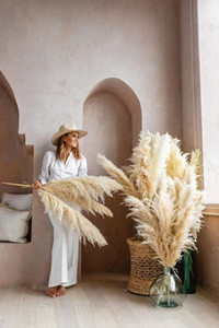 Natural Dried Pampas Grass Phragmites Communis Reed Plants Wedding Flower Bunch Home Decor Diy Dried Flowers Pampas Grass