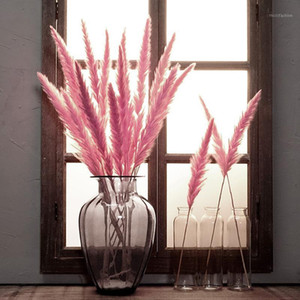 15 Pcs Bulrush Dried Small Pampas Grass Phragmites Communis Decoration Wedding Flower Bunch for Home Decor 6 Colors Bulrus BDF991