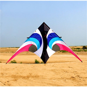 Colorful 2.8m kite delta triangle flying kite for audlts outdoor fun toys gifts free shipping 1018