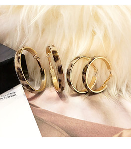 S925 Silver Needle Korean Autumn and Winter New Plush Leopard Print Temperament Personality Simple Ring Ear Hoop Earrings Female