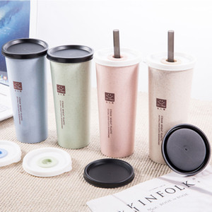 1PC Portable Handy Wheat Straw Water Cup with Lid Double Lid Cola Coffee Plastic Travel Water Cup Home Office Gift