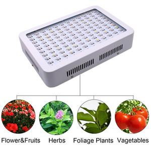 미국의 재고 주도 온실 식물 꽃 빛 600W 듀얼 칩 전체 빛 스펙트럼 식물 성장 램프를 성장 텐트 램프를 성장