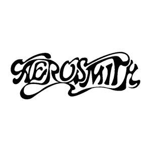 17.8 سنتيمتر * 6.5 سنتيمتر aerosmith الفينيل ملصقا سيارة الشارات الأسود / الفضة C13-000628