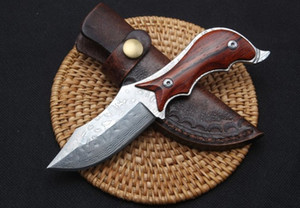 Weird fish straight knife fixed blade knife Camping Survival Gift Knife Outdoor Tools Xmas Gift for man a2008