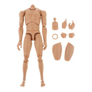 """1 6 Scale Male Man Boy Body Figure Military Chest Muscular Skeleton Rude Nude Body for 12\"""" Soldiers Action Figure Head Toys"""